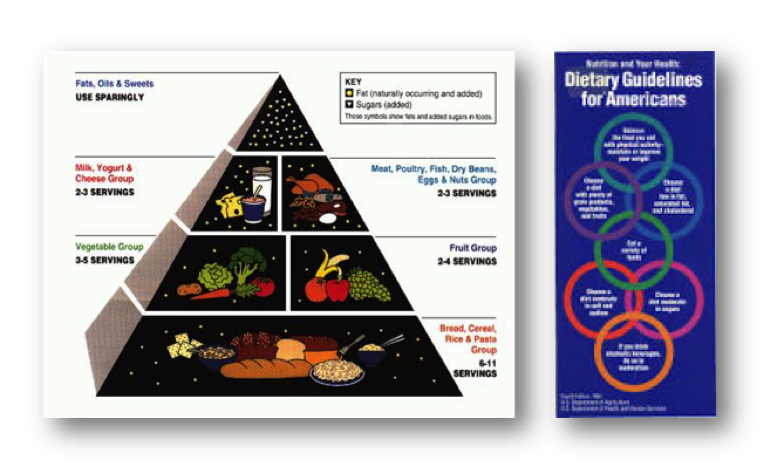 Food Guide Pyramid (1992), Dietary Guidelines for Americans (1995)