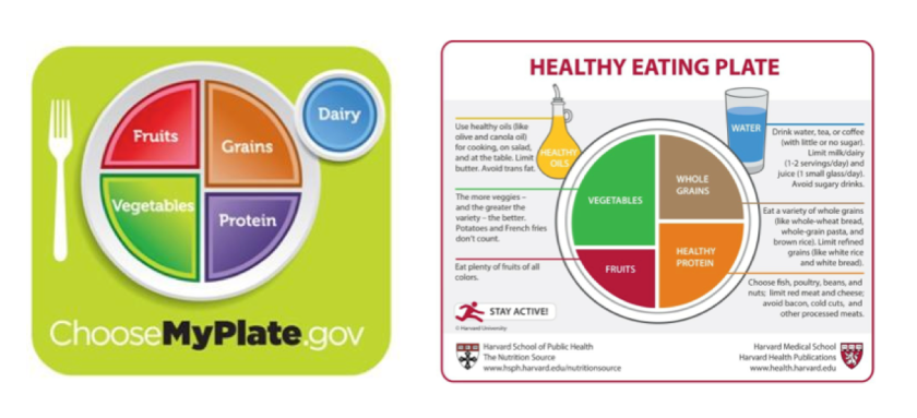MyPlate (2011) and Harvard's Healthy Eating Plate