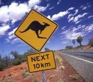 Kangaroo road signage, 2014.