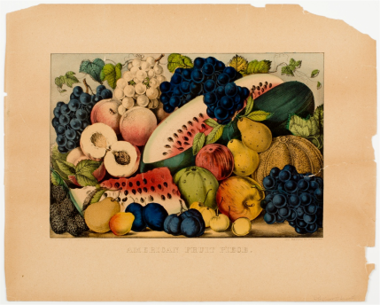 Currier & Ives, American Fruit Piece, 1872-74